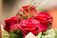 Управляющая жилищная компания «УРАЛ-СТ» поздравляет всех милых женщин с  праздником – Днем 8 Марта!