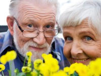 Приглашаем на праздничный концерт ко  Дню пожилого человека